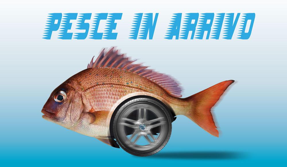 Consegna a domicilio di pesce a Fano
